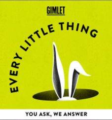 Every Little Thing Podcase